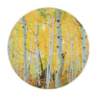 Fall colors of Aspen trees 1 Cutting Board