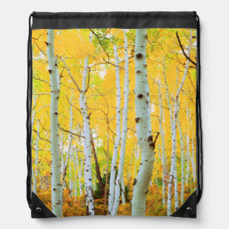 Fall colors of Aspen trees 1 Drawstring Bag