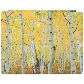 Fall colors of Aspen trees 1 iPad Cover