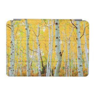 Fall colors of Aspen trees 1 iPad Mini Cover