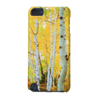 Fall colors of Aspen trees 1 iPod Touch (5th Generation) Covers