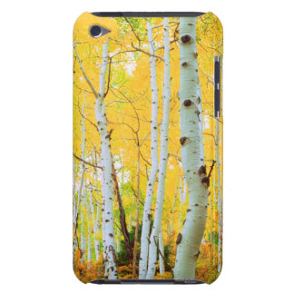 Fall colors of Aspen trees 1 iPod Touch Cover
