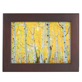 Fall colors of Aspen trees 1 Keepsake Box