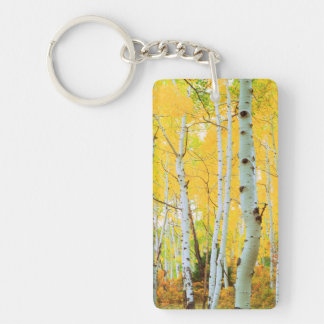 Fall colors of Aspen trees 1 Key Ring