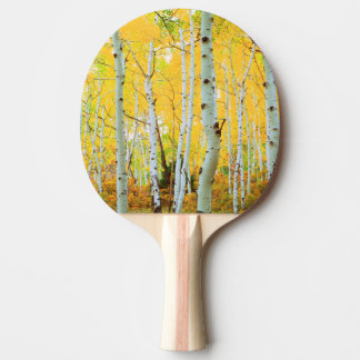 Fall colors of Aspen trees 1 Ping Pong Paddle