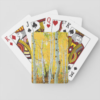 Fall colors of Aspen trees 1 Playing Cards