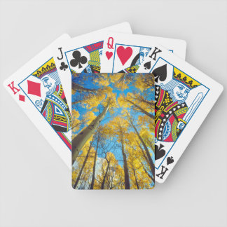 Fall colors of Aspen trees 2 Bicycle Playing Cards