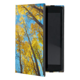 Fall colors of Aspen trees 2 Case For iPad Mini