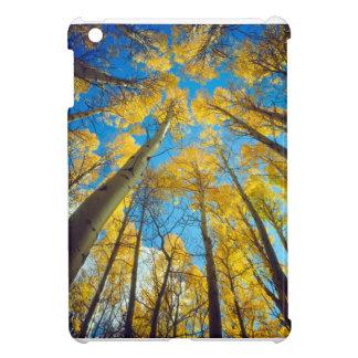 Fall colors of Aspen trees 2 Cover For The iPad Mini