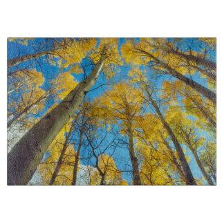 Fall colors of Aspen trees 2 Cutting Board