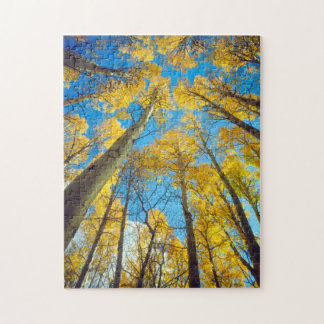 Fall colors of Aspen trees 2 Jigsaw Puzzle