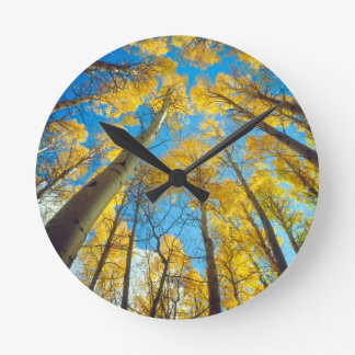 Fall colors of Aspen trees 2 Round Clock