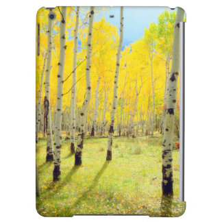Fall colors of Aspen trees 4