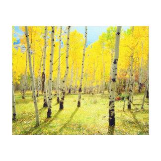 Fall colors of Aspen trees 4 Canvas Print
