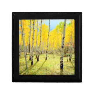 Fall colors of Aspen trees 4 Gift Box