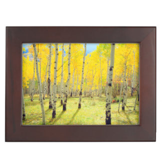 Fall colors of Aspen trees 4 Keepsake Box