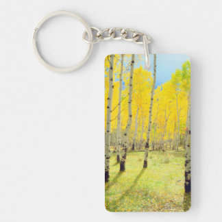 Fall colors of Aspen trees 4 Key Ring