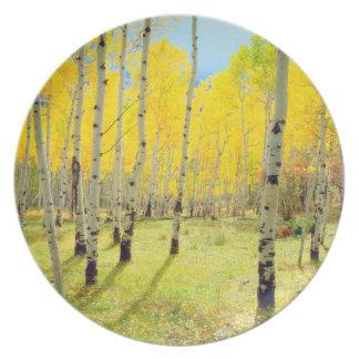 Fall colors of Aspen trees 4 Plates