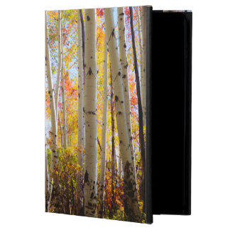 Fall colors of Aspen trees 5 Cover For iPad Air