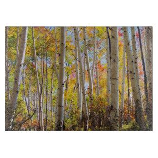 Fall colors of Aspen trees 5 Cutting Board