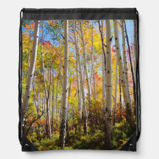Fall colors of Aspen trees 5 Drawstring Bag