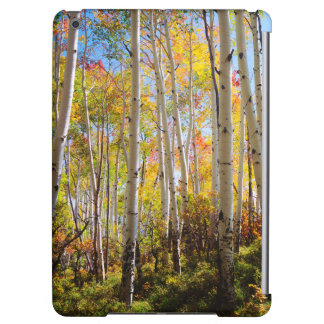 Fall colors of Aspen trees 5 iPad Air Case