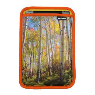 Fall colors of Aspen trees 5 iPad Mini Sleeve
