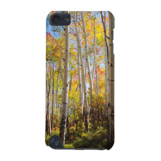 Fall colors of Aspen trees 5 iPod Touch (5th Generation) Cases