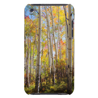 Fall colors of Aspen trees 5 iPod Touch Case