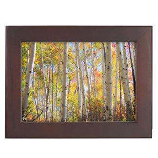 Fall colors of Aspen trees 5 Keepsake Box