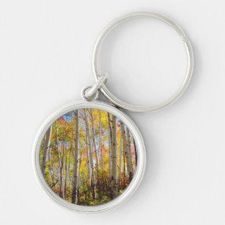 Fall colors of Aspen trees 5 Key Ring