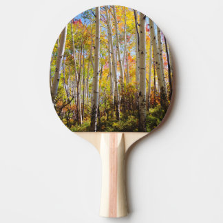 Fall colors of Aspen trees 5 Ping Pong Paddle