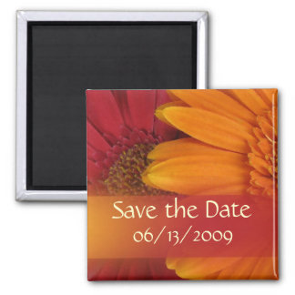 Fall colors - Save the Date Square Magnet