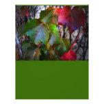 Fall Colour Flyer Design