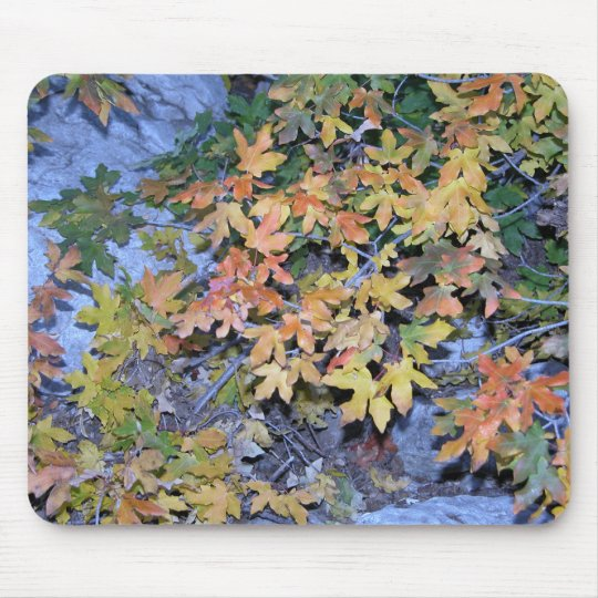 Fall Colours 1 Mouse Pad