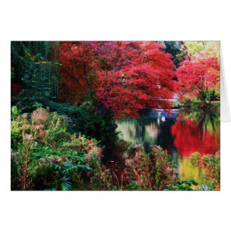 Fall Colours and Autumn Leaves Greeting Card