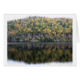 Fall colours in North West Ontario Card
