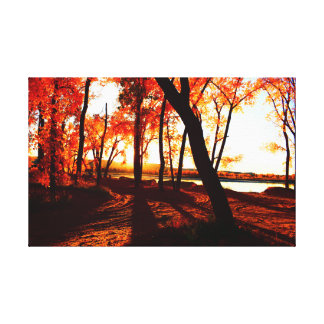 Fall colours in the forest by the Missouri River Canvas Print