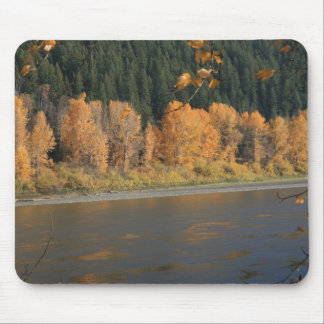 Fall Colours Mouse Pad