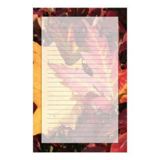 Fall Contrast Stationery