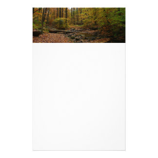 Fall Creek at Laurel Hill State Park Personalized Stationery