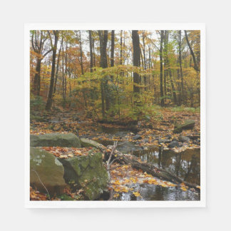 Fall Creek with Reflection at Laurel Hill Park Disposable Serviette