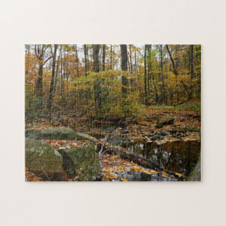 Fall Creek with Reflection at Laurel Hill Park Jigsaw Puzzle