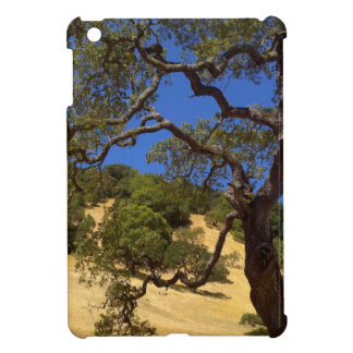 Fall Day in Northern California Cover For The iPad Mini