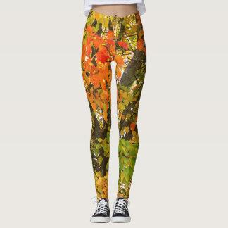 Fall Designer Women's Leggings Quality Leggings
