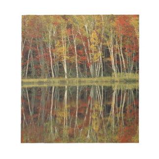 Fall Foliage and Birch Reflections; Hiawatha Notepad