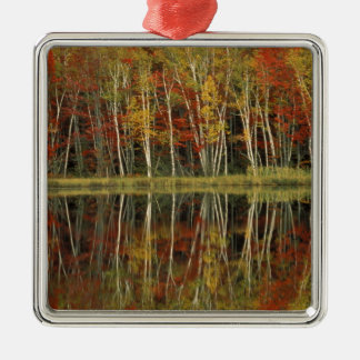 Fall Foliage and Birch Reflections; Hiawatha Silver-Colored Square Decoration