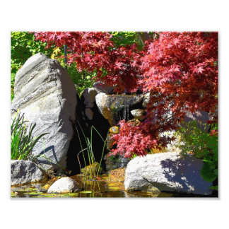 Fall foliage and pond print