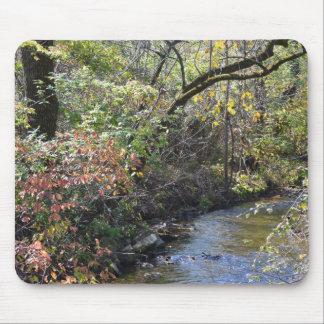Fall Foliage near Creek Mouse Mat