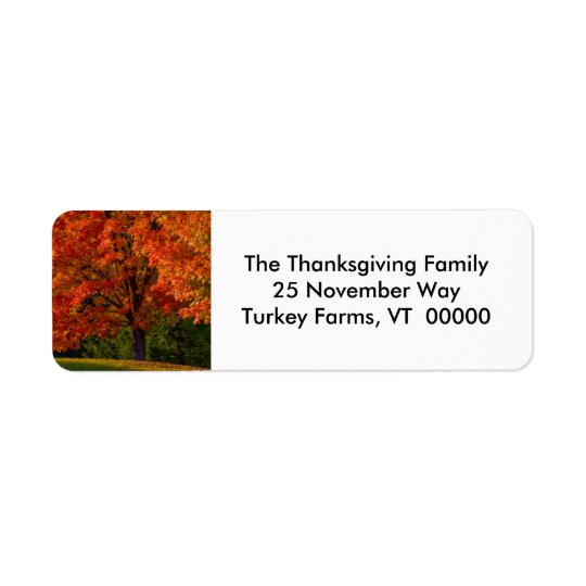 Fall Foliage Photo Return Address Labels Sticker